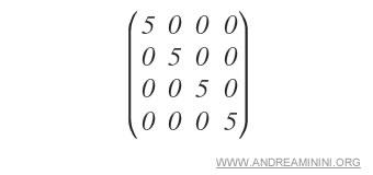 un esempio di matrice scalare