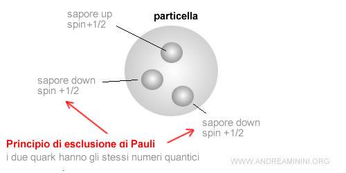 due quark hanno gli stessi numeri quantici