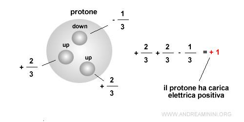 la carica elettrica del protone è determinata dai tre quark Up Up Down ( u u d )